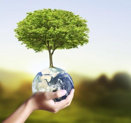 Miljö & Kvalitét